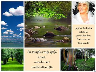 kitaplar:    Su Mavi YeşilGökyüzüDüşünmekten kaçınırken,alıc...