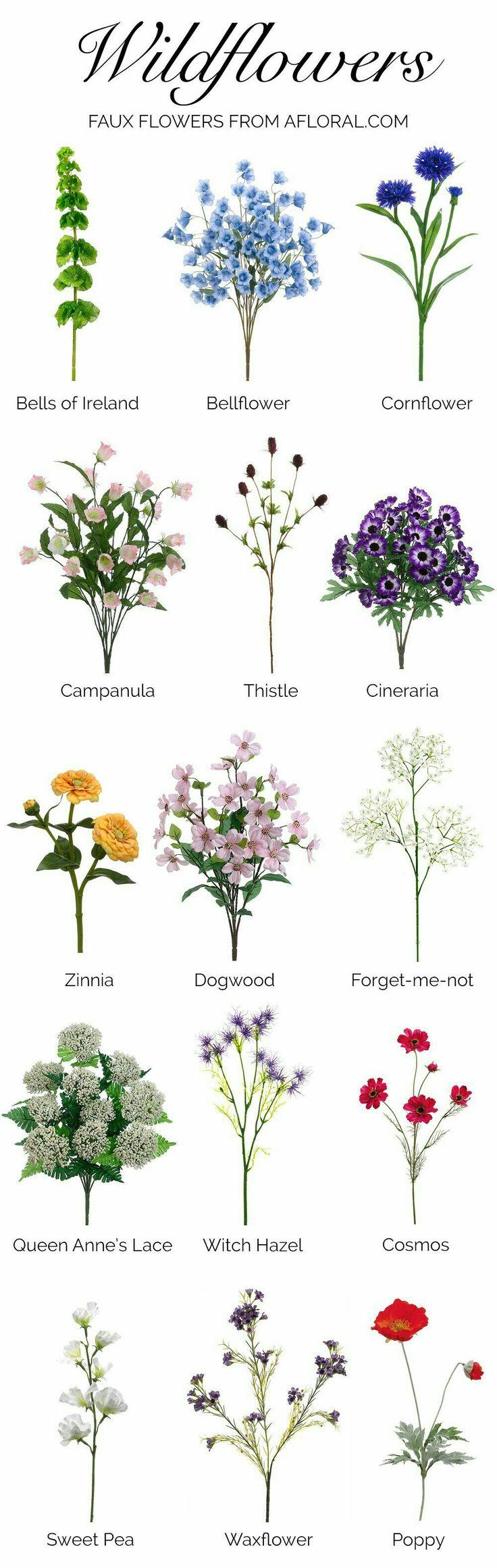 best flowers for inspiration images on pinterest gardening