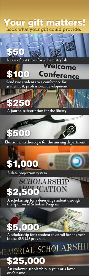 university annual fund gift catalog - Google Search