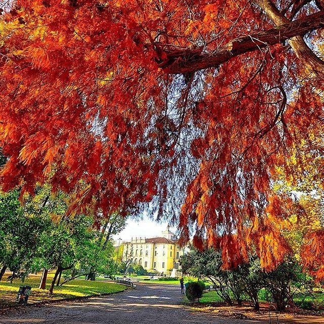Buona serata a tutti dai Giardini Indro Montanelli