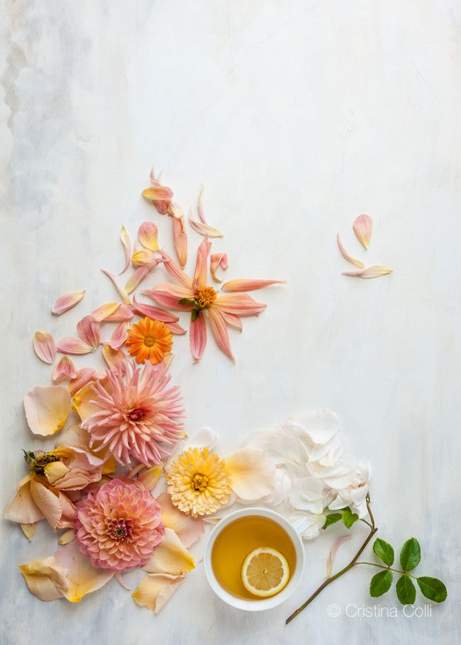 Making a painted backdrop for photography © Cristina Colli