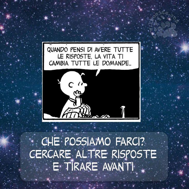 Onestamente, credo che di alternative non ne abbiamo ;) In fondo la vita è tutta una scoperta e quindi infinite sono le domande .. e le risposte! Vi auguro di trovarle sempre e soprattutto di avere sempre voglia di cercarle   #linus, #peanuts, #charliebrown, #schultz, #vita, #domande, #illusioni, #eternaricerca, #italiano, #fumetti, #comics,