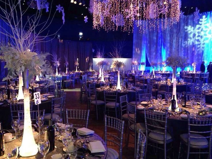 A Frozen themed gala dinner Christmas Party in the Mansion House Dublin. For more visit www.gotchacovered.ie