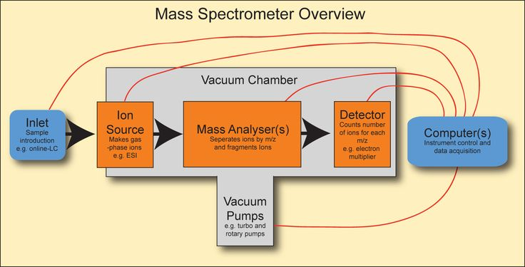 Flow Chart of Mass Spectrometry