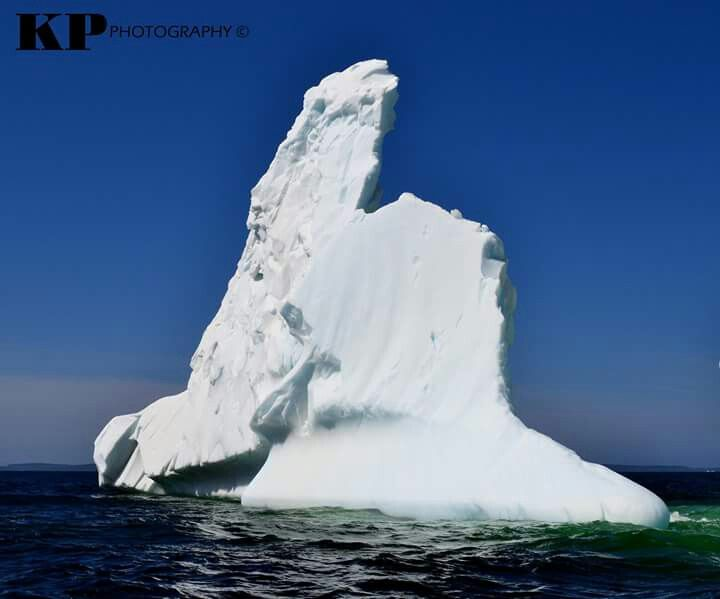 Newfoundland shaped iceberg. Picture taken 15 km. offshore from Musgrave Harbour. June 2015