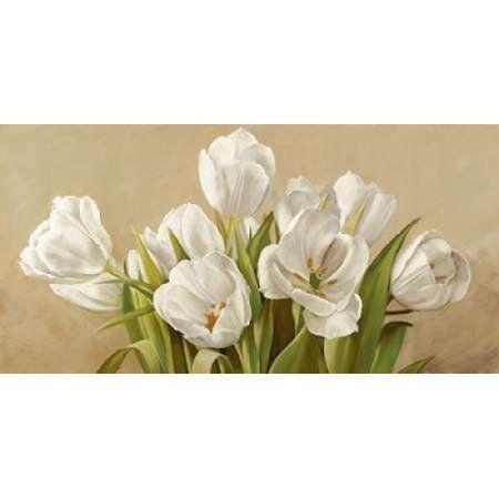 Tulipani bianchi Canvas Art - Serena Biffi (24 x 48)