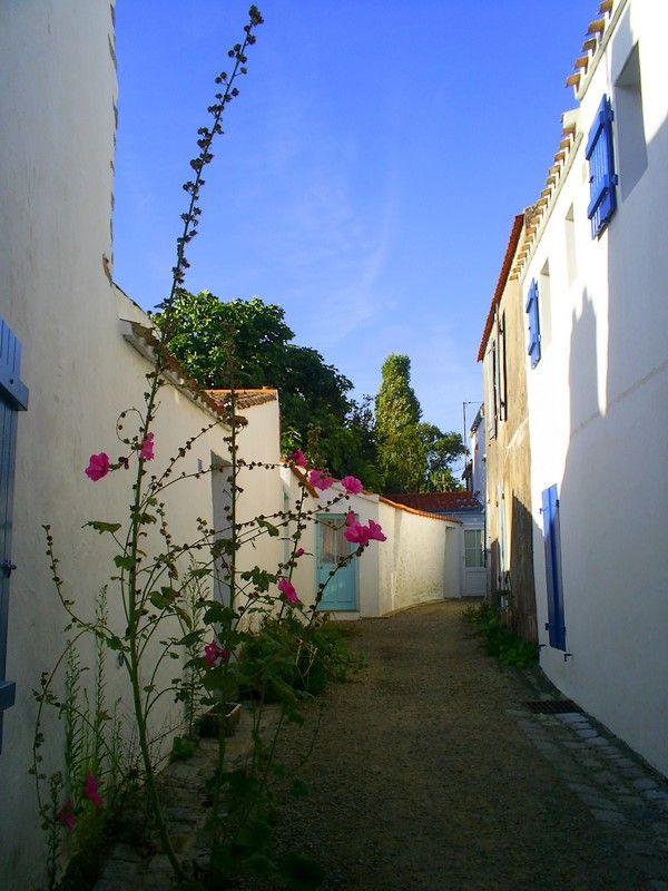 Noirmoutier-en-l Ile