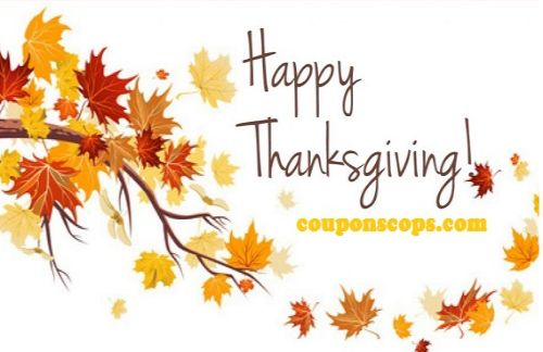 http://couponscops.com/blog/thanksgiving-day-nastydress-coupon/ Fairy Season Coupon Codes, Fairy Season Thanksgiving Deals, Glam corner Thanksgiving Deal, NastyDress Coupon Codes, NastyDress ThanksGiving Day Coupon, ThanksGiving Day NastyDress Coupon, Thanksgiving Deal, Thanksgiving deals couponscops, Thanksgiving Sale 2017 #couponscops #thanksgiving #thanksgiving2017