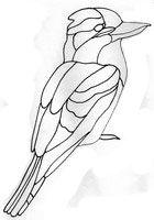 Stained glass - Australian bird patterns