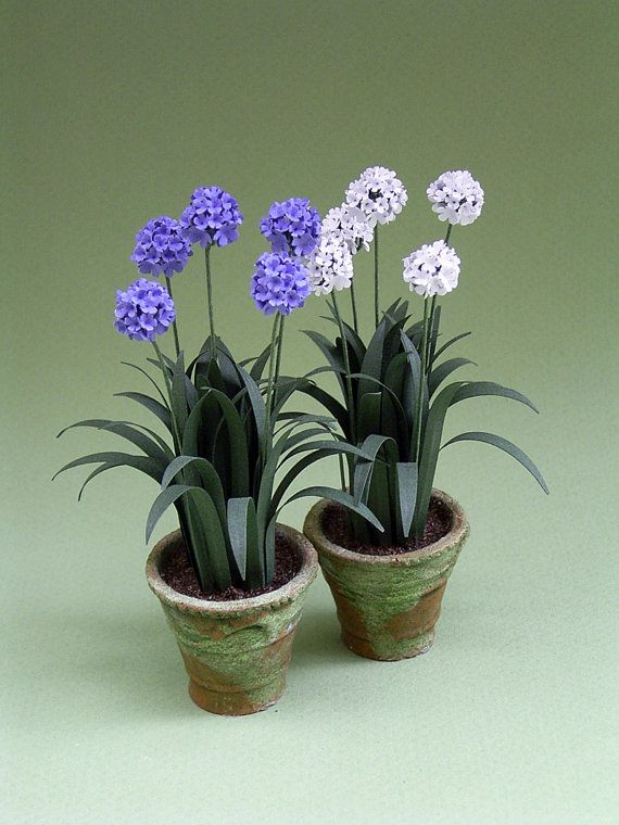 Agapanthus paper Flower Kit for 1/12th scale by TheMiniatureGarden, £5.80