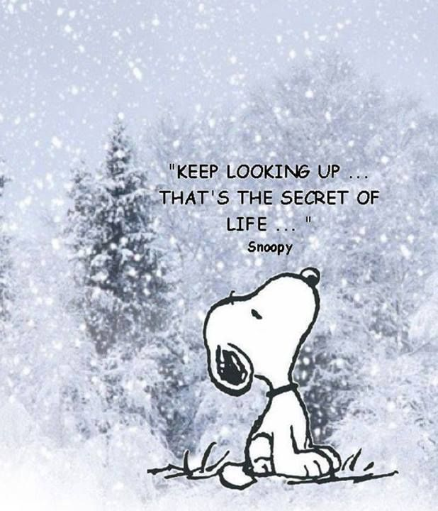 Keep looking up that's the secret of life: