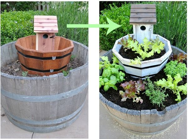 Tiered lettuce and herb garden. Fun!