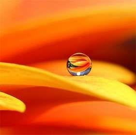 #Оранжевые имена