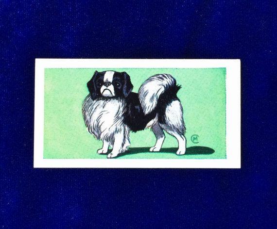 Japanese Spaniel Chin Dog Art VIMS Dog Food 1970 Trading