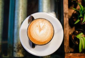 Miami's Best Craft Coffee Shops