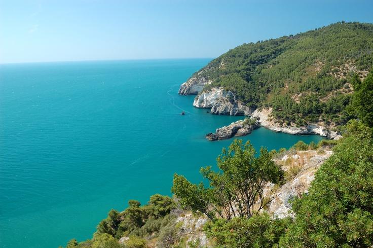"""Il promontorio del Gargano si trova in Puglia ed è considerato per la sua forma lo """"sperone d'Italia"""". Vegetazione lussureggiante, mare cristallino, località suggestive, luoghi di fede e sapori genuini sono gli elementi caratteristici del Gargano. // The Gargano Promontory in Apulia, due to its shape, is considered to be """"Italy's buttress."""" Leafy vegetation, a crystalline sea, evocative places, a faithful people and the genuine tastes of this zone are its fundamental characteristics."""