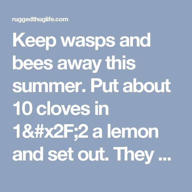 Keep wasps and bees away this summer. Put about 10 cloves in 1/2 a lemon and set out. They do not like the scent. Cut off the ends so they sit flat. - ruggedthug
