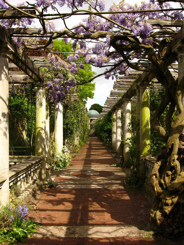 17 Best Images About Outdoor Pergola On Pinterest