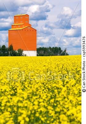 Orange grain elevator sits on the Canadian prairies with a field of canstockphoto.com