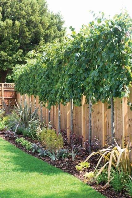 10 Ideen für die Landschaftsgestaltung, um aus Ihrem Garten ein Paradies zu machen!