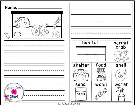 Kindergarten Journal Writing Prompts Differentiated Set 8 Pet Hermit Crab Kindergarten Writing Journals Journal Writing Prompts Kindergarten Journal Writing Prompts