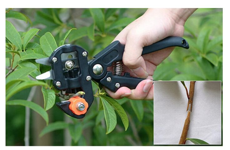 """merlinsgardenmarket: """" Garden Fruit Tree Pro Pruning Shears Scissor Grafting Cutting Tools Suit Cutting an anastomotic interface with high efficiency. Easy to use and save 40% of the time and energy of traditional grafting method. Change the blades..."""