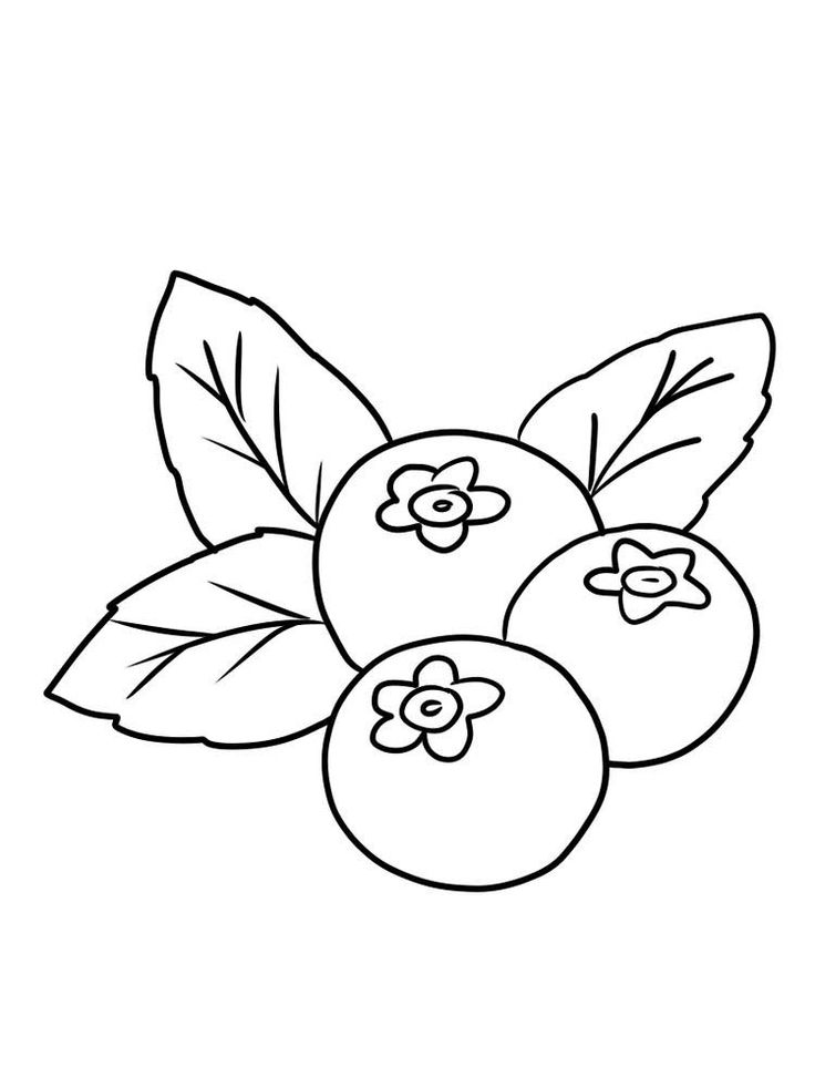 Blueberry Coloring Image Print | Fruit coloring pages