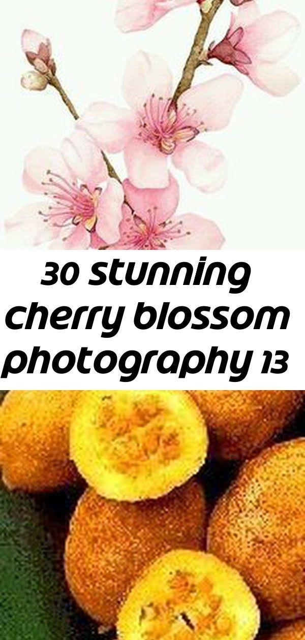 30 Stunning Cherry Blossom Photography 13 Cherry Blossom Fruit Blossom