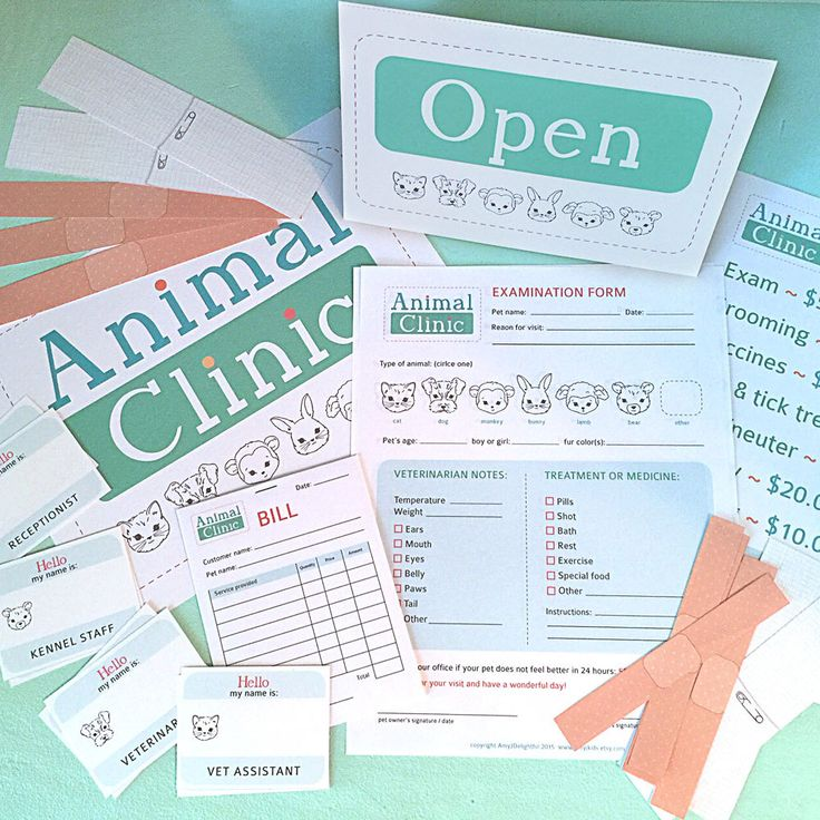 Pretend Play ANIMAL CLINIC Printables- Instant PDF Download- examination forms, bandages, signs, name tags, vet by amyjkids on Etsy https://www.etsy.com/listing/236512476/pretend-play-animal-clinic-printables