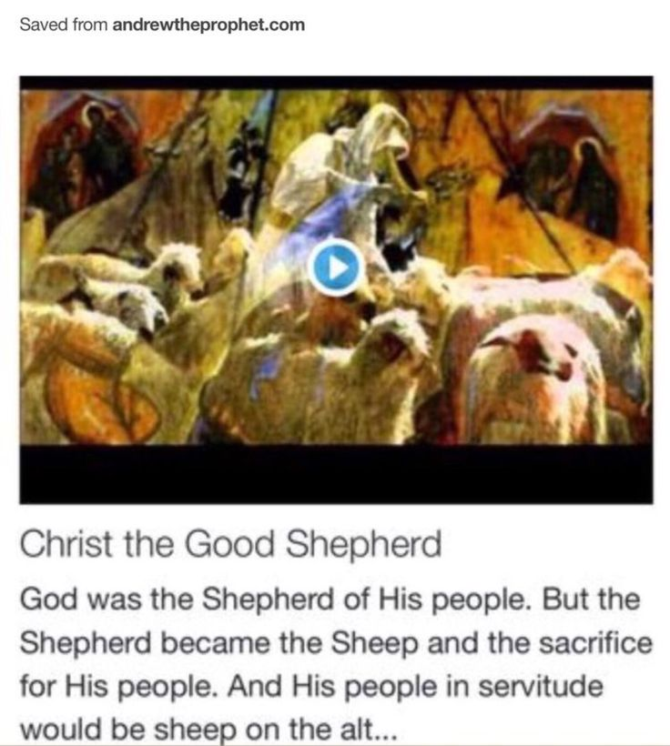 Christ the Good Shepherd from Signs, Science and Symbols of the Prophecy http://www.andrewtheprophet.com/11001/35267.html