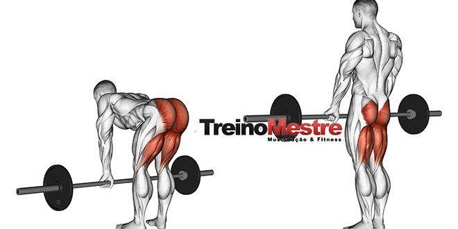 Exercício Stiff, como utilizá-lo corretamente em seu treino (5 dicas importantes)  #stiff #legs