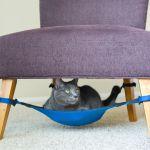 Rede de gato