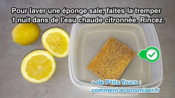 de l'eau et du citron pour nettoyer une éponge sale