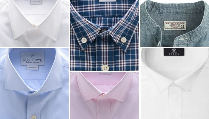9 Different Collars That You Should Know!