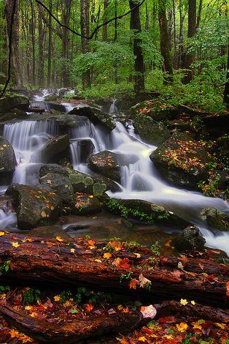 Smokey Mountain Stream by † David Gunter, via Flickr