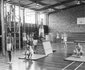 pinresearch on gym with images  gym basketball