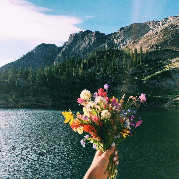 BEST HIKES IN UTAH - Cecret Lake & Albion Basin | elanaloo.com