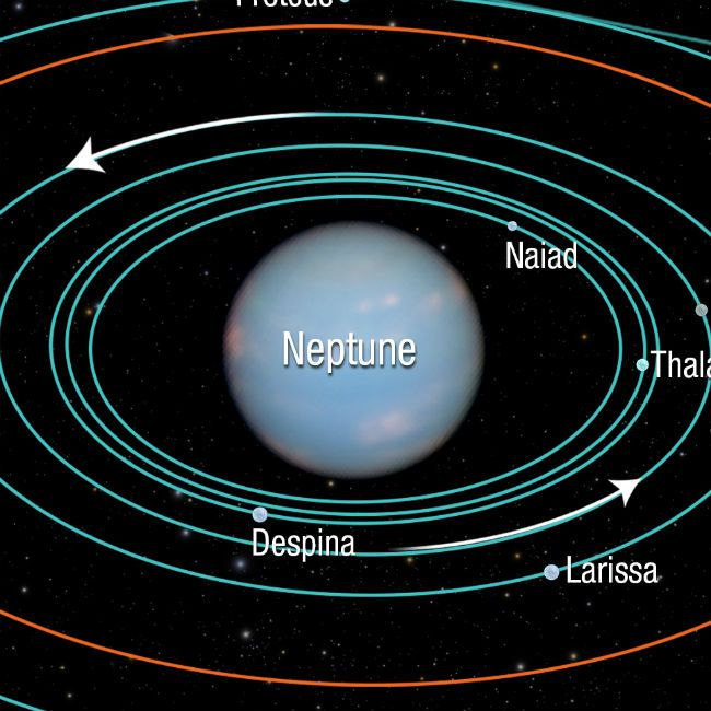 Neptune's 14 Moons (page 3) - Pics about space