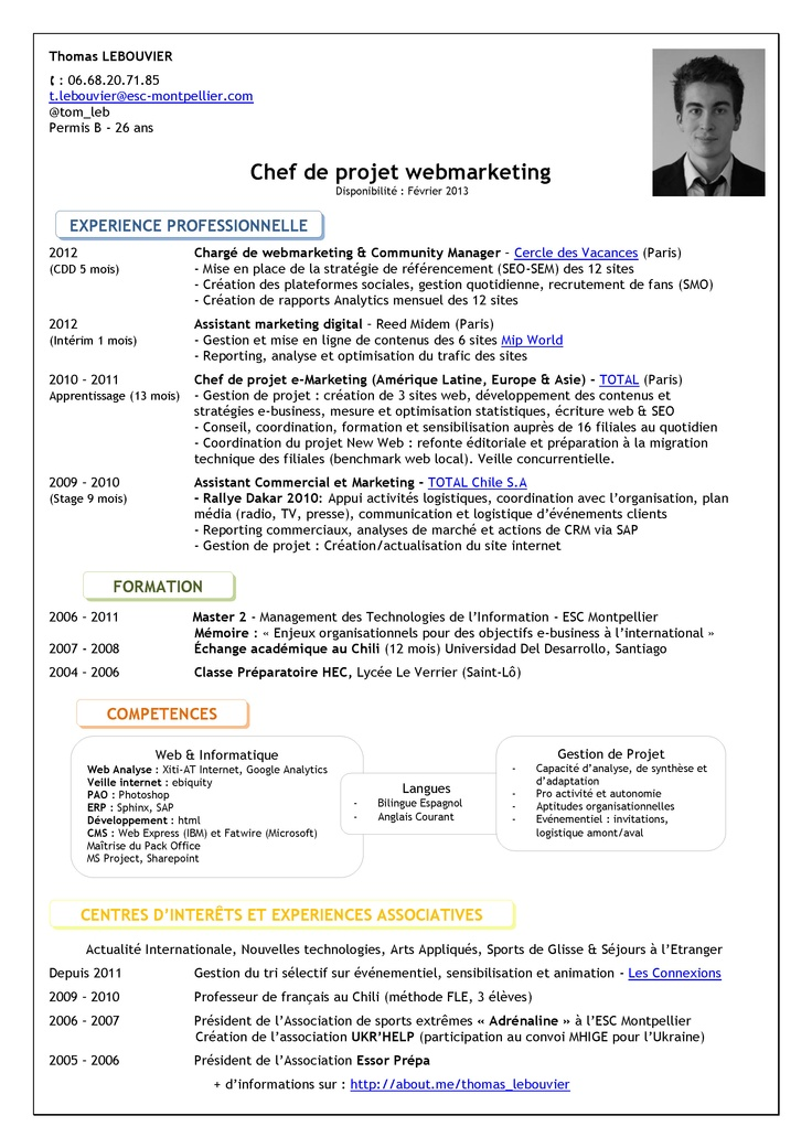 curriculum vitae chef de projet informatique    paper writing websites