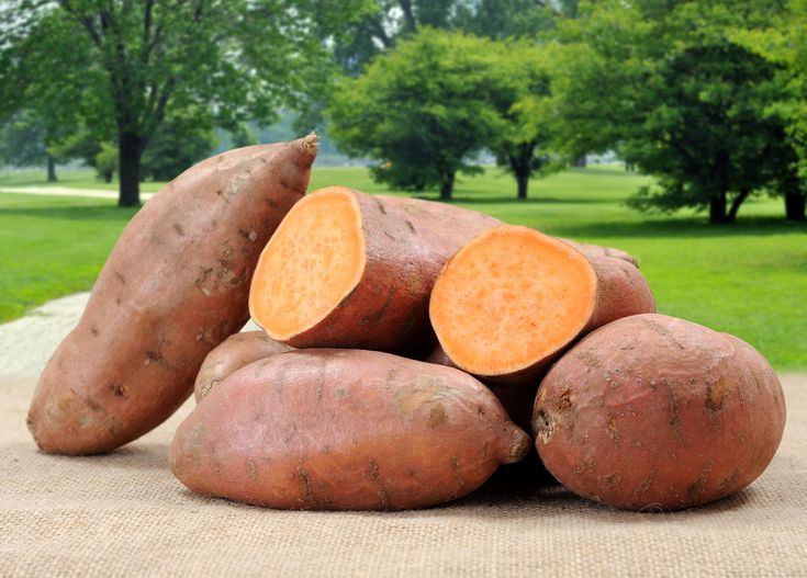 Sweet potatoes are a surprisingly nutritious vegetable. They are especially high in vitamins A, C, E, and B6, fiber and manganese.