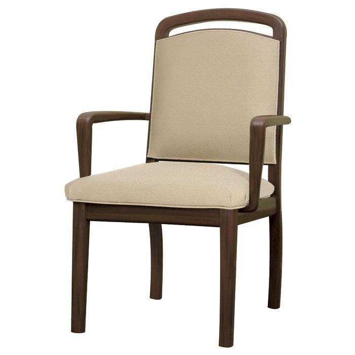 beau  chaises salle à manger avec accoudoirs