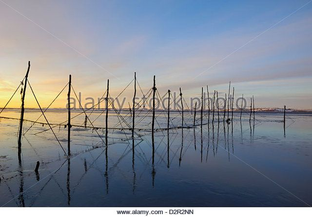 Salmon fishing nets, Solway Firth, near Creetown, Dumfries and Galloway, Scotland, United Kingdom, Europe - Stock Image