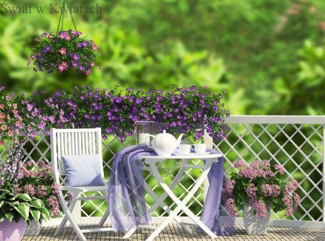 Kwiaty Tarasowe Summer Planter Outdoor Gardens Grass Wallpaper