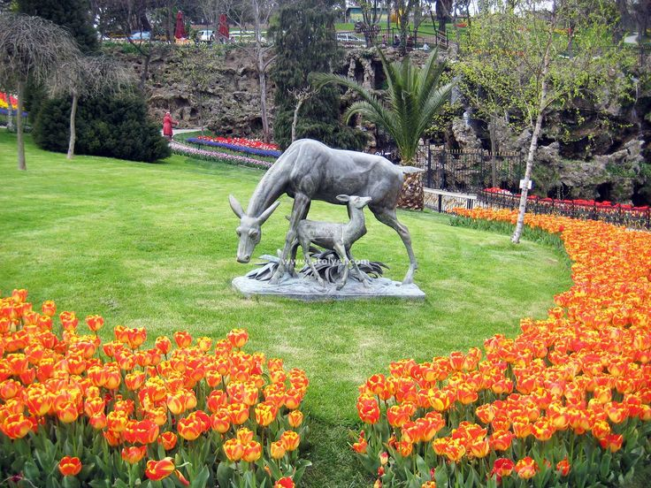 Istanbul has 3 major parks. The first one is Emirgan Korusu Park: