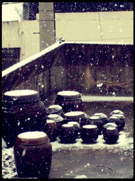 Snowy Jeongeup