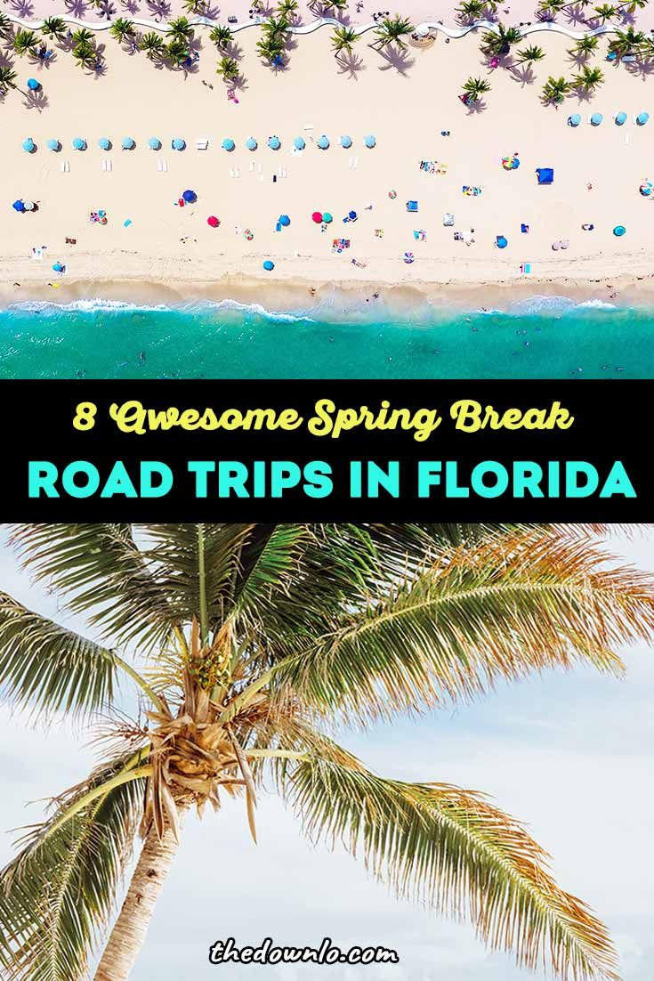 The Best Florida Road Trips For Sun And Fun In The Sunshine State The Down Lo Florida Travel Road Trip Road Trip Fun