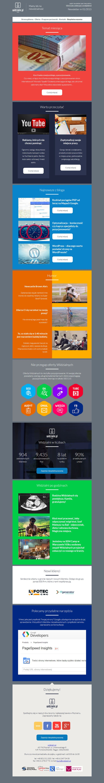 Widzialni Newsletter #webdesign #web #design #piotr #wolniewicz #portfolio #inspiration #newsletter #email #marketing