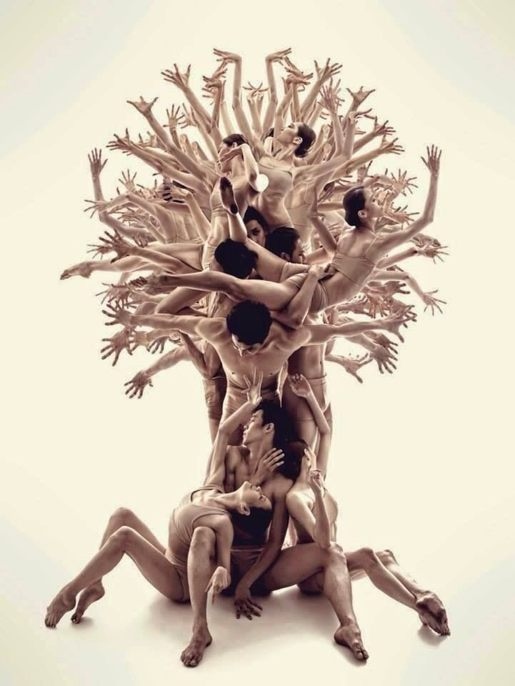 The Tree of Life by Roman Shatsky | Dance art, Dance pictures, Human tree