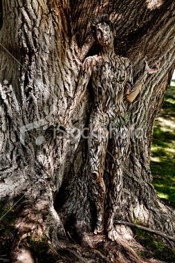 body  http://i.istockimg.com/file_thumbview_approve/14126123/2/stock-photo-14126123-body-painting-tree-camouflage.jpg