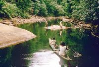 Guyana: Report exposes threat to dam 'Lost World'